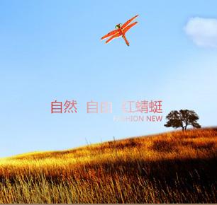 红蜻蜓集团有限公司