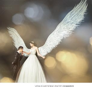 维纳斯国际婚纱摄影集团
